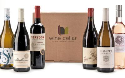 Celebrating SA's top Women Winemakers