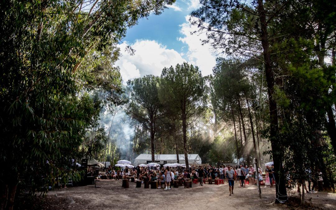 Littlegig: setting the bar for outdoor art and music festivals