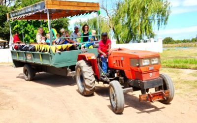 Eikendal dazzles with Weintaufe Harvest Carnival