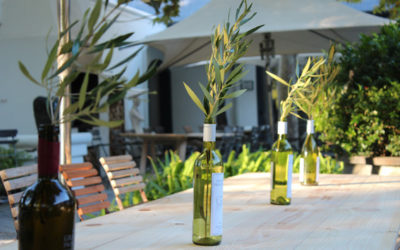 Grande Provence rolls out the barrel on Harvest Day