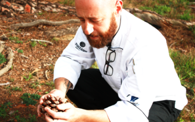 Bot River is going wild with forage inspired feast