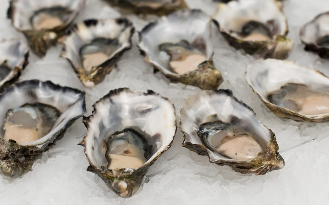 Grande Provence sparkles with with new MCC & oysters 3-ways tasting