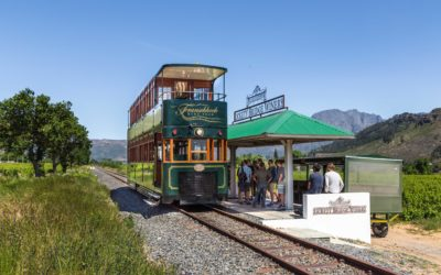 Discover the Vineyards of Franschhoek in the most unique way!