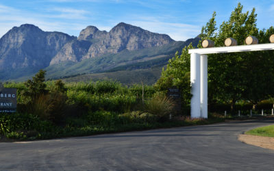 Join Backsberg this Mother's Day for a full weekend of celebrating women!