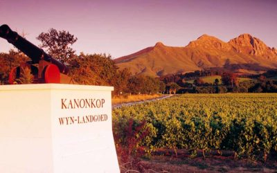 Kanonkop Paul Sauer 2015 Tops Tim Atkin Report
