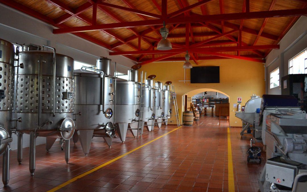 A good year (For Stellenbosch wines)