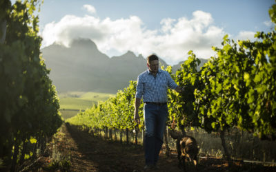A toast to a century of winemaking heritage