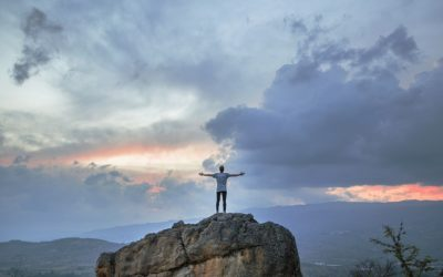 Four ways to survive (and thrive) this year