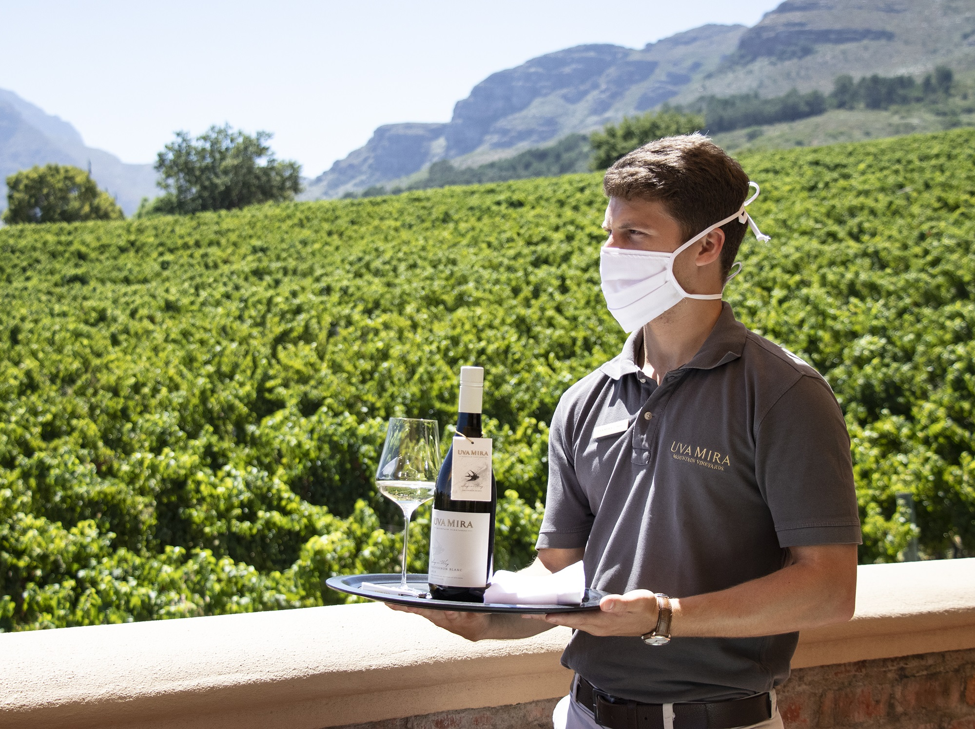 Uva Mira Mountain Vineyards' Sing-a-Wing Sauvignon Blanc