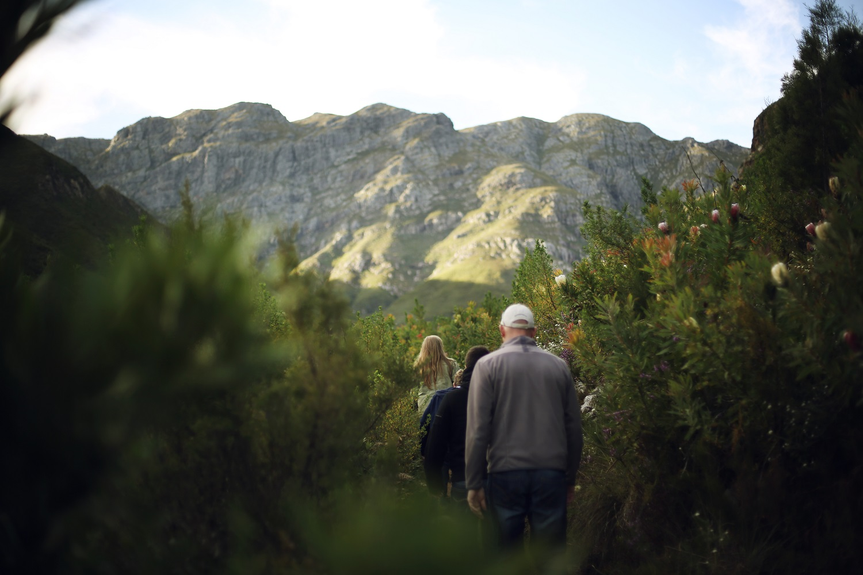 Visit Stellenbosch