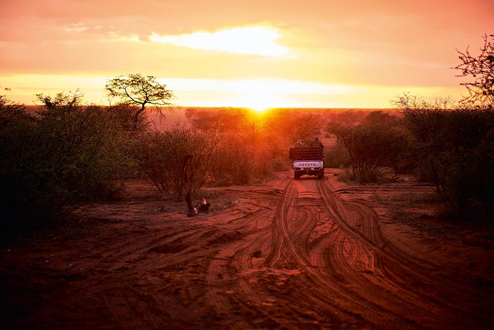 From the Veld, Danene van der Westhuyzen, Namibia